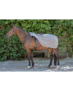 Harry's Horse Trainingsdecke aus Teddyfleece