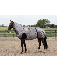 Harry's Horse Ekzem / Fliegendecke UV