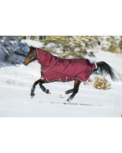 Horseware Rambo Duo Turnout 100G Outer & Hood with 300G Liner