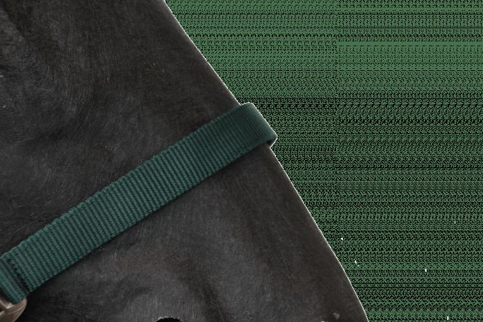 Hofman Halfter Classic dunkelgrün
