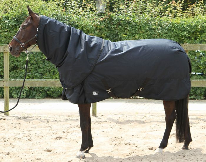 Harry's Horse Außenteppich Thor 400gr mit Hals